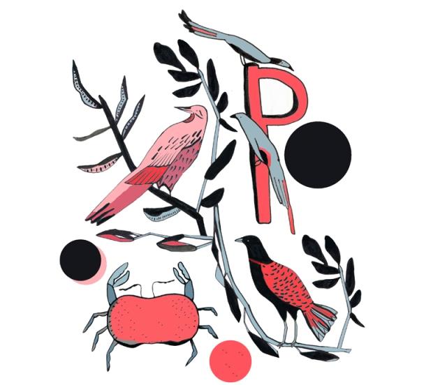 Gill Chantler Illustration