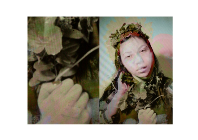 Vasilisa Forbes Photography