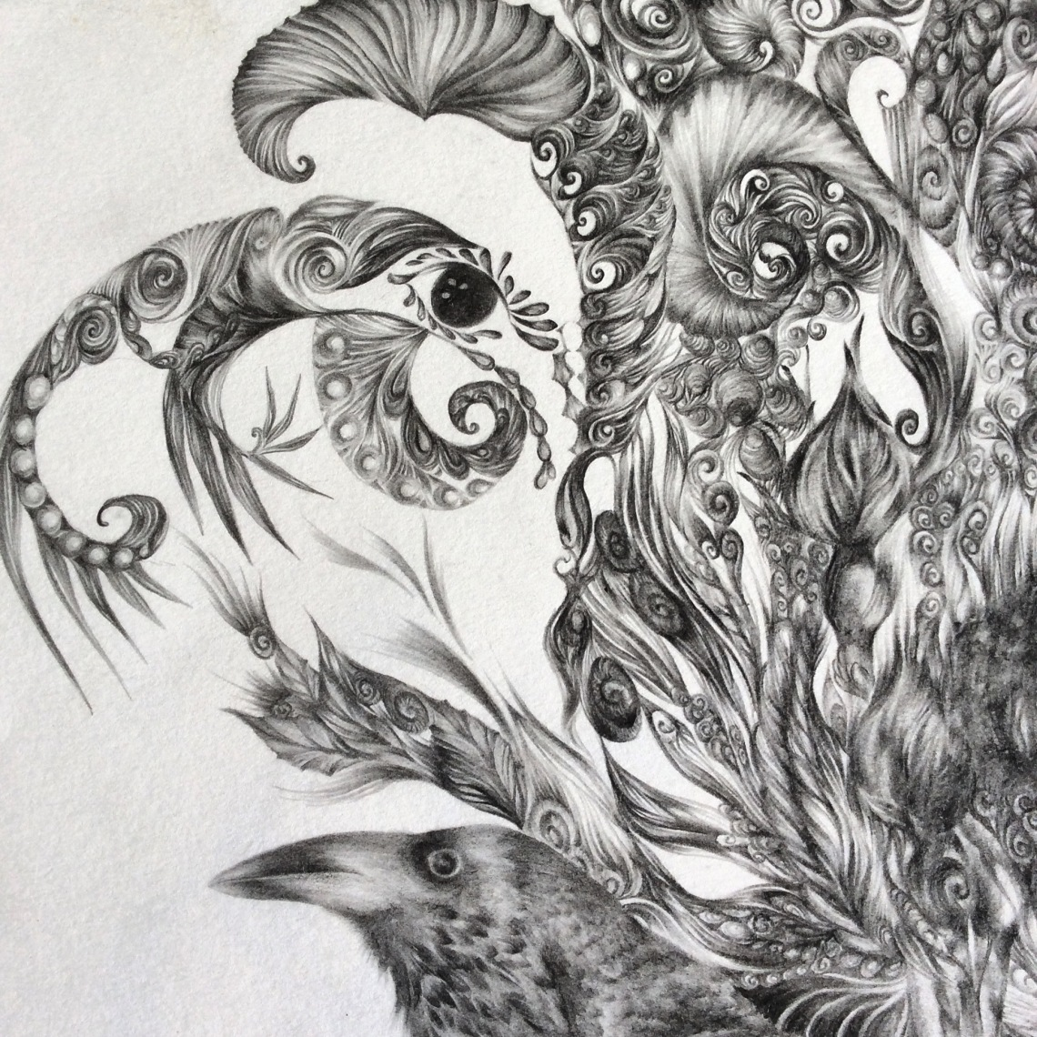 Nature-Inspired Pencil-Drawn Illustrations by Artist, Loren Danielle on Jung Katz Art Blog