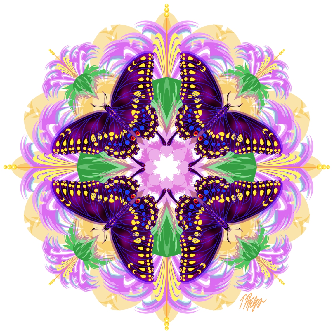 Nature Mandala Graphic Designs by Medical Illustrator and Professor, Timothy Phelps on Jung Katz Art Blog